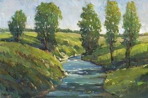 Lush Landscape III by Tim OToole