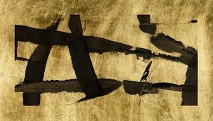 Lustr Obsidian Harmony II by Tim OToole