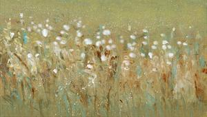 Meadow Blossoms I by Tim OToole