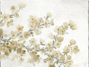 Neutral Cherry Blossom Composition II by Tim OToole