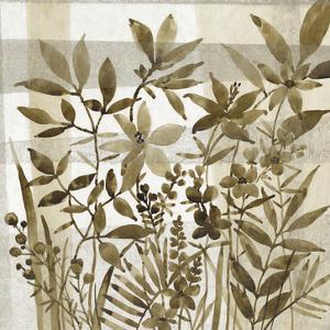 Neutral Garden II by Tim OToole