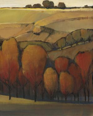 On the Ridge I by Tim OToole