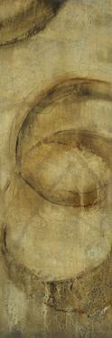 Orbit II by Tim OToole