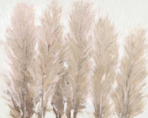 Pampas Grass I by Tim OToole