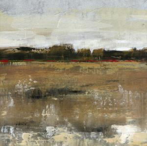 Pastoral II by Tim OToole
