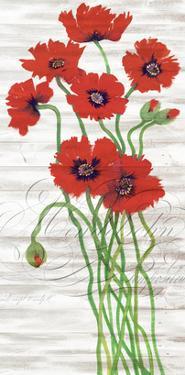 Red Poppy Panel I by Tim OToole