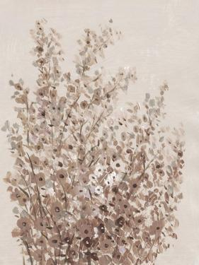 Rustic Wildflowers I by Tim OToole