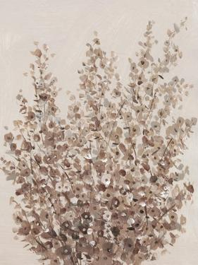 Rustic Wildflowers II by Tim OToole