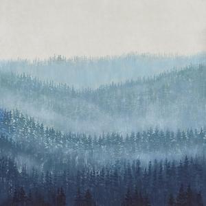 Smoky Ridge I by Tim OToole