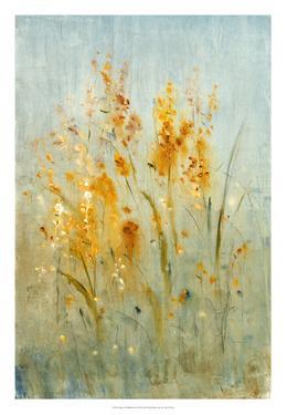 Spray of Wildflowers I by Tim OToole