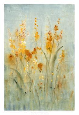 Spray of Wildflowers II by Tim OToole