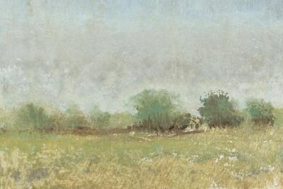 Spring Field II
