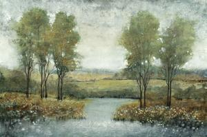 Stream Side II by Tim OToole