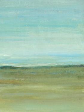 Terra Verde II by Tim OToole