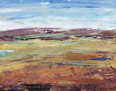 Terra Vista I by Tim OToole