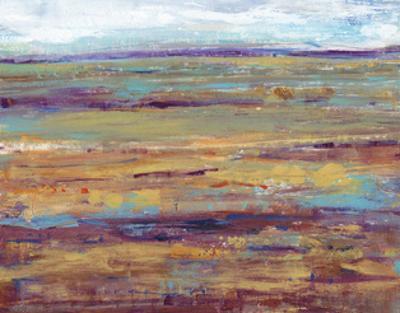Terra Vista III by Tim OToole