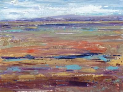 Terra Vista IV by Tim OToole