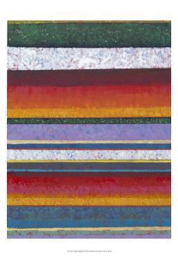Tulip Fields II by Tim OToole