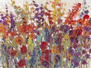 Variety of Flowers II by Tim OToole