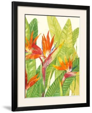 Watercolor Tropical Flowers IV by Tim OToole