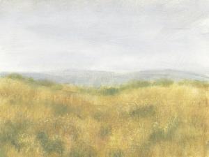 Wheat Fields I by Tim OToole