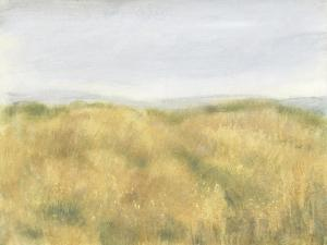 Wheat Fields II by Tim OToole