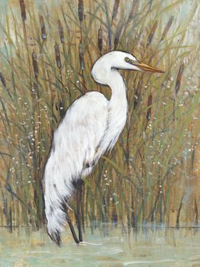 White Egret II by Tim OToole
