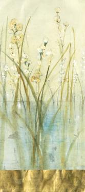 Pond Edge I by Tim