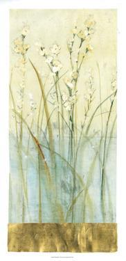 Pond Edge II by Tim