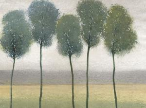 Row of Trees II by Tim