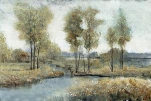 Stream Side I by Tim