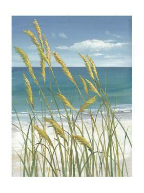 Summer Breeze I by Tim