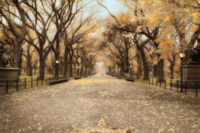 Central Park I by Tim Wampler