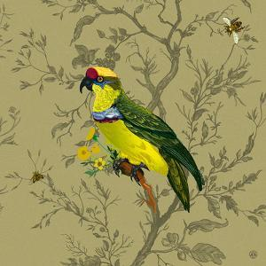 Pisticule Parrot by Timorous Beasties