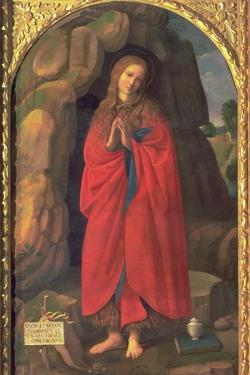 St. Mary Magdalene by Timoteo Viti