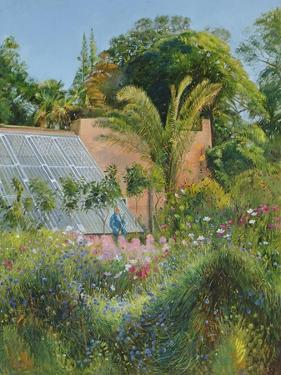 Cornflower Waves at Heligan by Timothy Easton