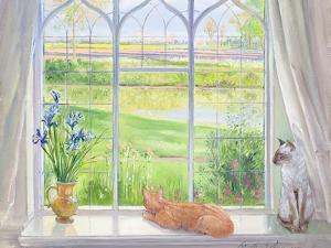Evening Breeze by Timothy Easton