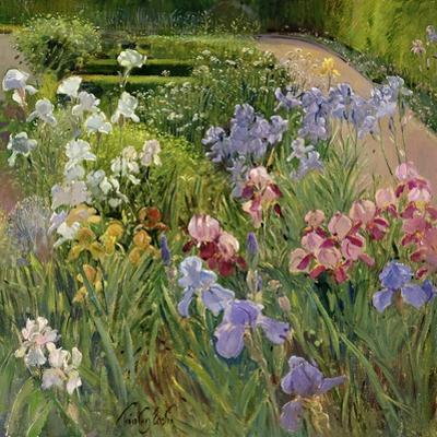 Irises at Bedfield by Timothy Easton