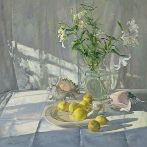 Reflections and Shadows by Timothy Easton