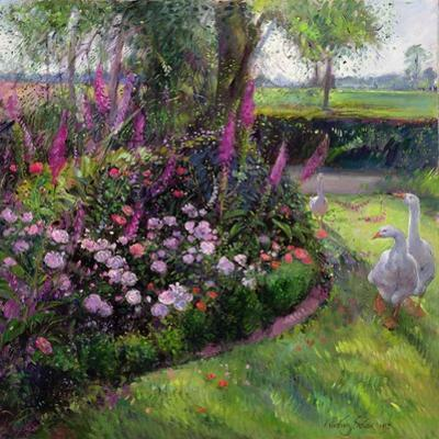 Rose Bed and Geese, 1992 by Timothy Easton