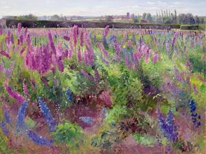 The Delphinium Field, 1991 by Timothy Easton