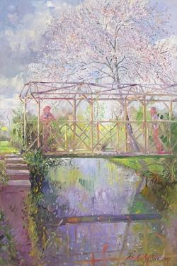 The Trellis Crossing by Timothy Easton