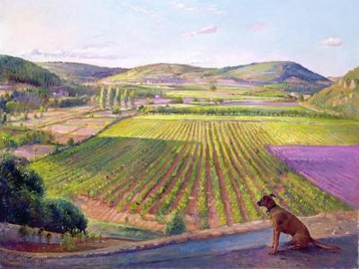 Watching from the Walls, Old Provence, 1993 by Timothy Easton