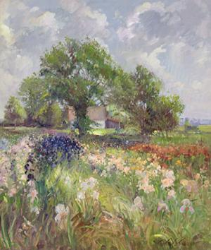White Barn and Iris Field, 1992 by Timothy Easton
