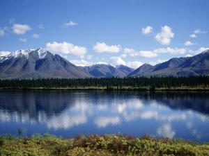 Denali, Alaska by Timothy O'Keefe