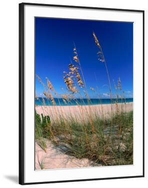 Grace Bay Beach, Turks & Caicos Islands by Timothy O'Keefe