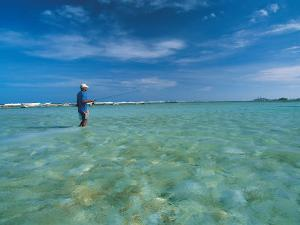 Man in Water Bone Fishing by Timothy O'Keefe