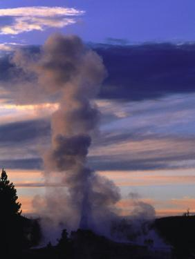 Old Faithful Area, Yellowstone National Park, WY by Timothy O'Keefe