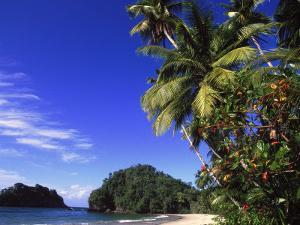 Paria Beach, Trinidad by Timothy O'Keefe