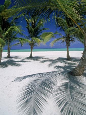 Playa Juanillo, Dominican Republic by Timothy O'Keefe